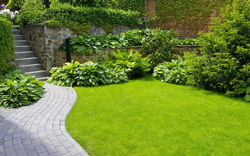 Gardener Bollington Macclesfield